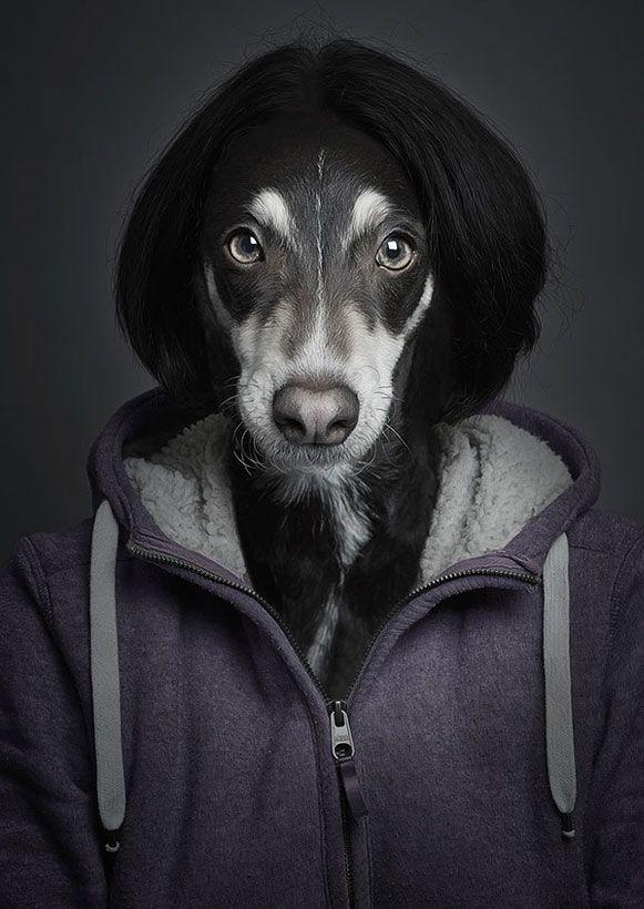 Bem Legaus!: Cachorros humanos
