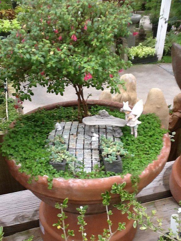 mini jardines - Buscar con Google macetas Pinterest Fairy