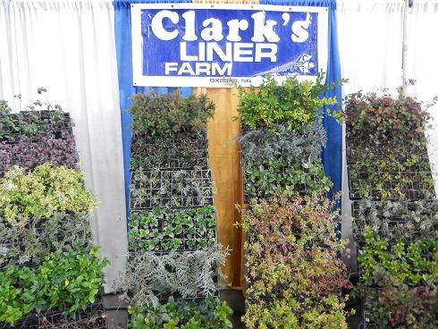 Clark S Liner Farm Whole Nursery Lawn Garden Address 4156 Blue Creek Lane Oxford Nc 27565 Phone 919 692 1020