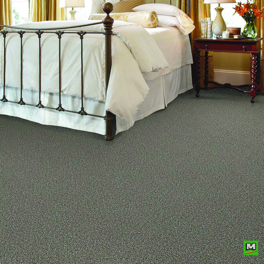 Shaw® Laguna Hills frieze carpet is lively and fun for any