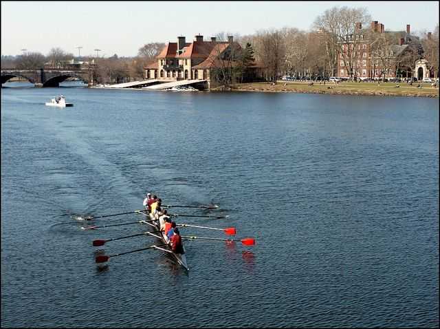 Harvard Crew Cambridge Massachusetts Pinterest Scenery