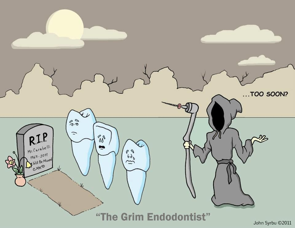 Dental humor 歯