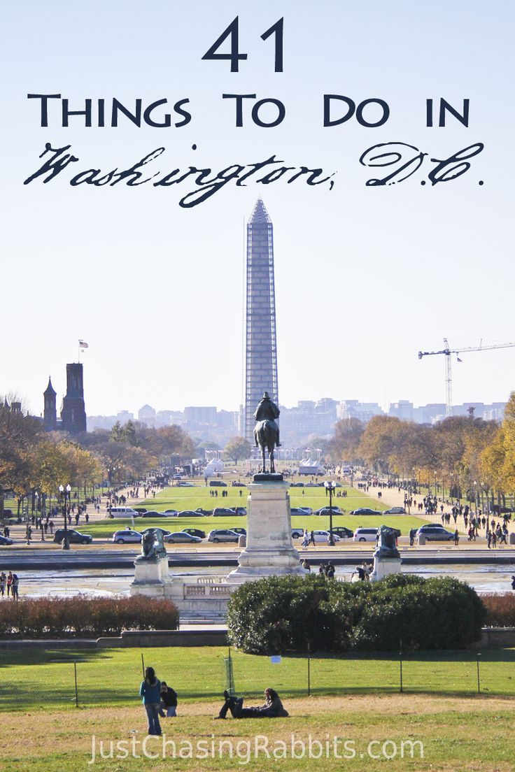 41 things to do in washington dc | travel & vacation | pinterest