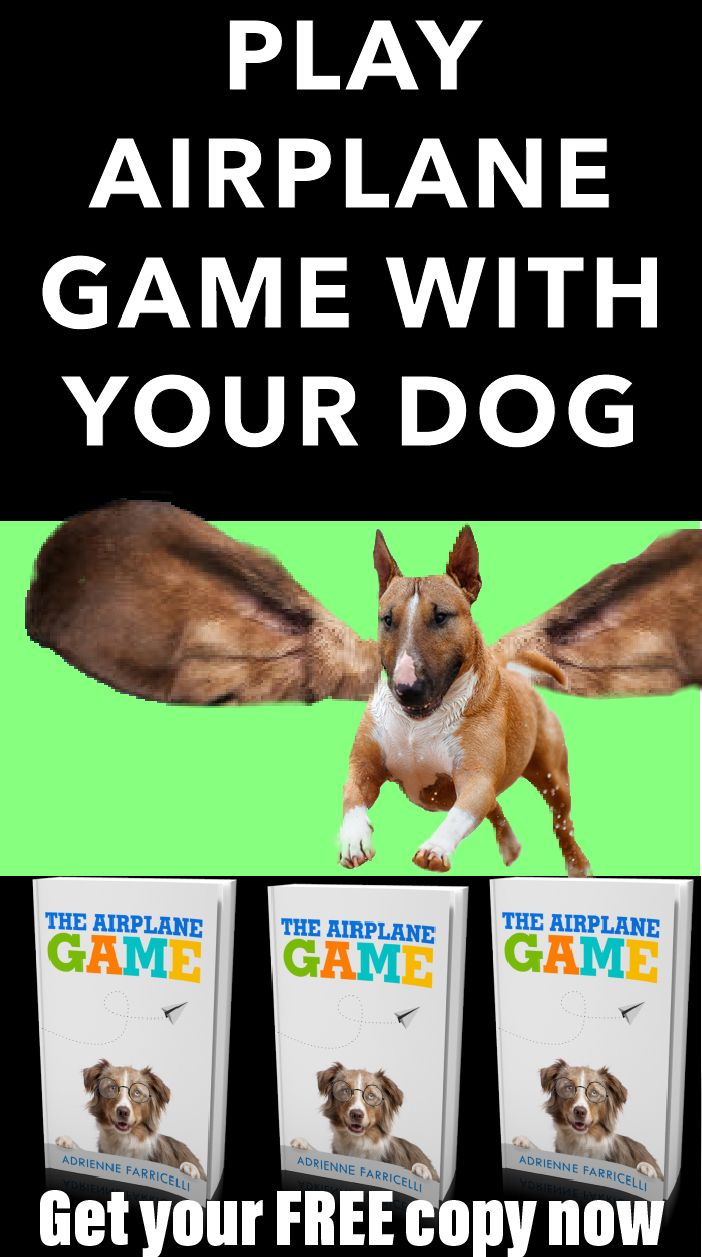 Get A Free Ebook And Train Your Dog How To Play Airplane Game