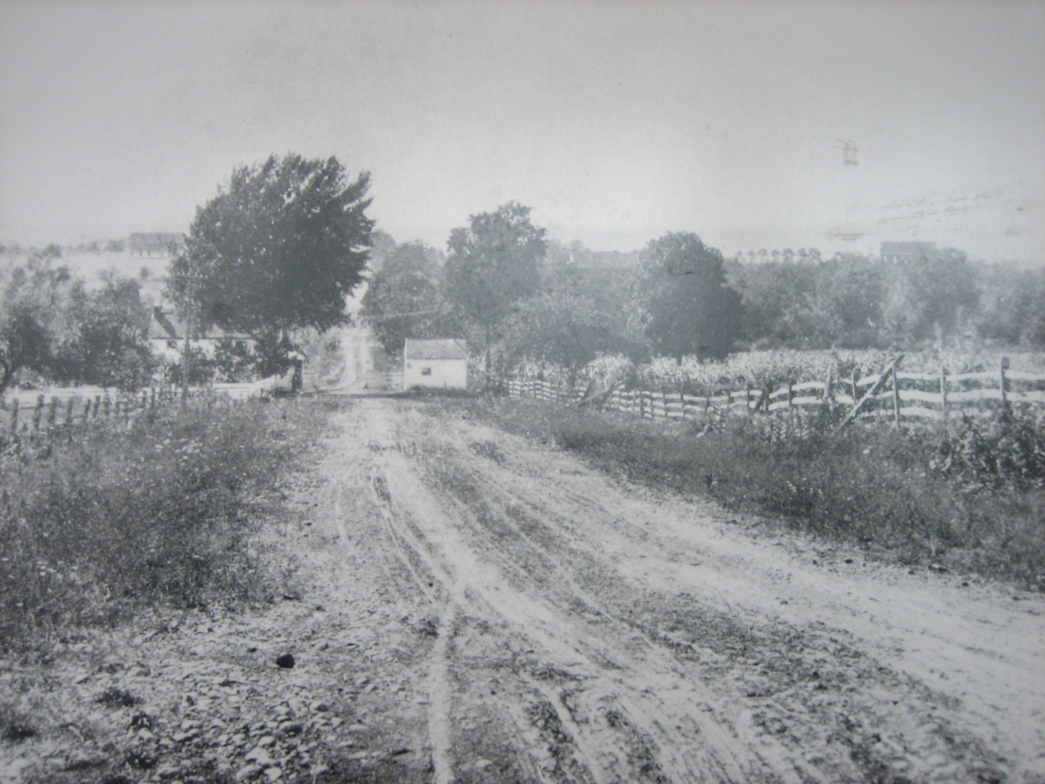Historic photograph of where the 150th Pennsylvania charged--looking NW on Chambersburg Pike west of Gettysburg, toll keepers house next to Willowbh Run on left behind tree--I've stayed in that house.