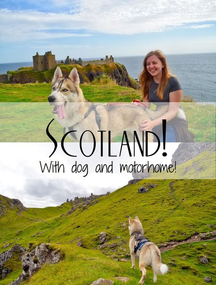 A post about our 2-week trip to Scotland with our Husky, Olaf and a motorhome! Travel in Europe.