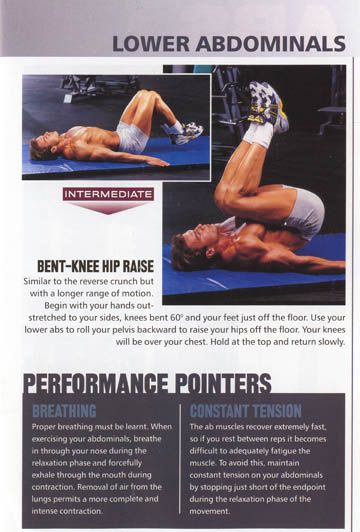 Muscle and Fitness Complete Guide to ABS ABS AND MORE ABS