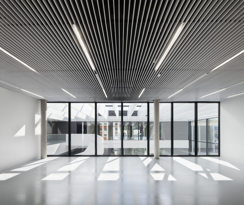Holz Decke Haus Design Bilder: Schallabsorber Trennwande