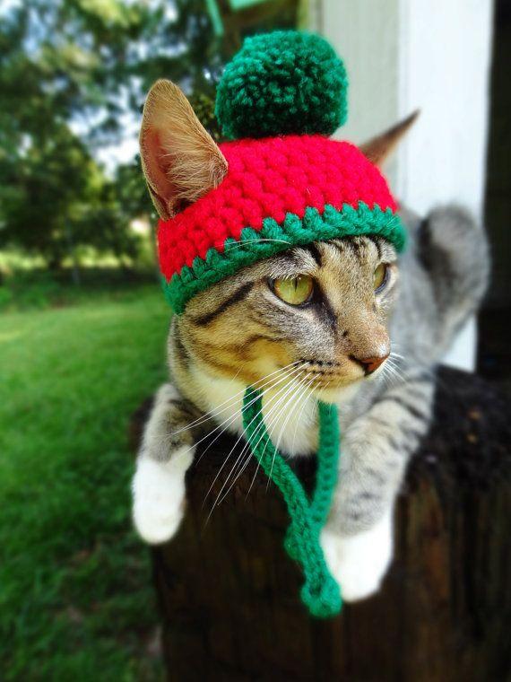 Weihnachten Hat Fur Weihnachten Bommel Mutze Von Iheartneedlework Christmas Cats Pet Costumes Diy Christmas Hats