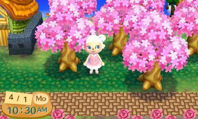 Animal Crossing Cherry Blossoms Dream Address 4300 2200 1238 Animal Crossing New Leaf Cherry Blossom