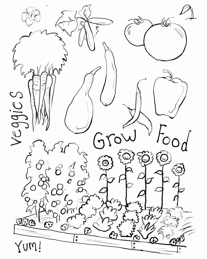 Vegetable Garden Coloring Pages Printable Lovely Flower Garden Coloring Pages Printable At Getdrawing Garden Coloring Pages Coloring Pages Fruit Coloring Pages