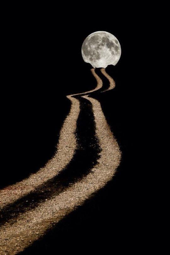 Черный-Нуар-Цварт-Неро-Негр: Фото | Лунный свет, Фотографии