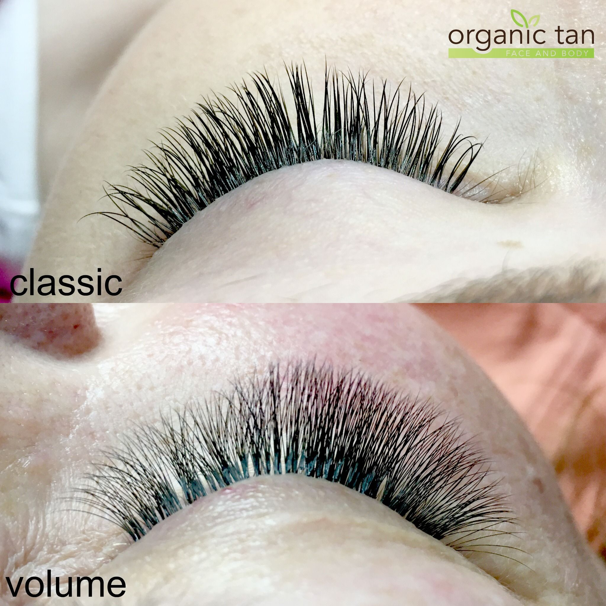Have You Recently Been Getting Lash Extentions And Now Can Not Live
