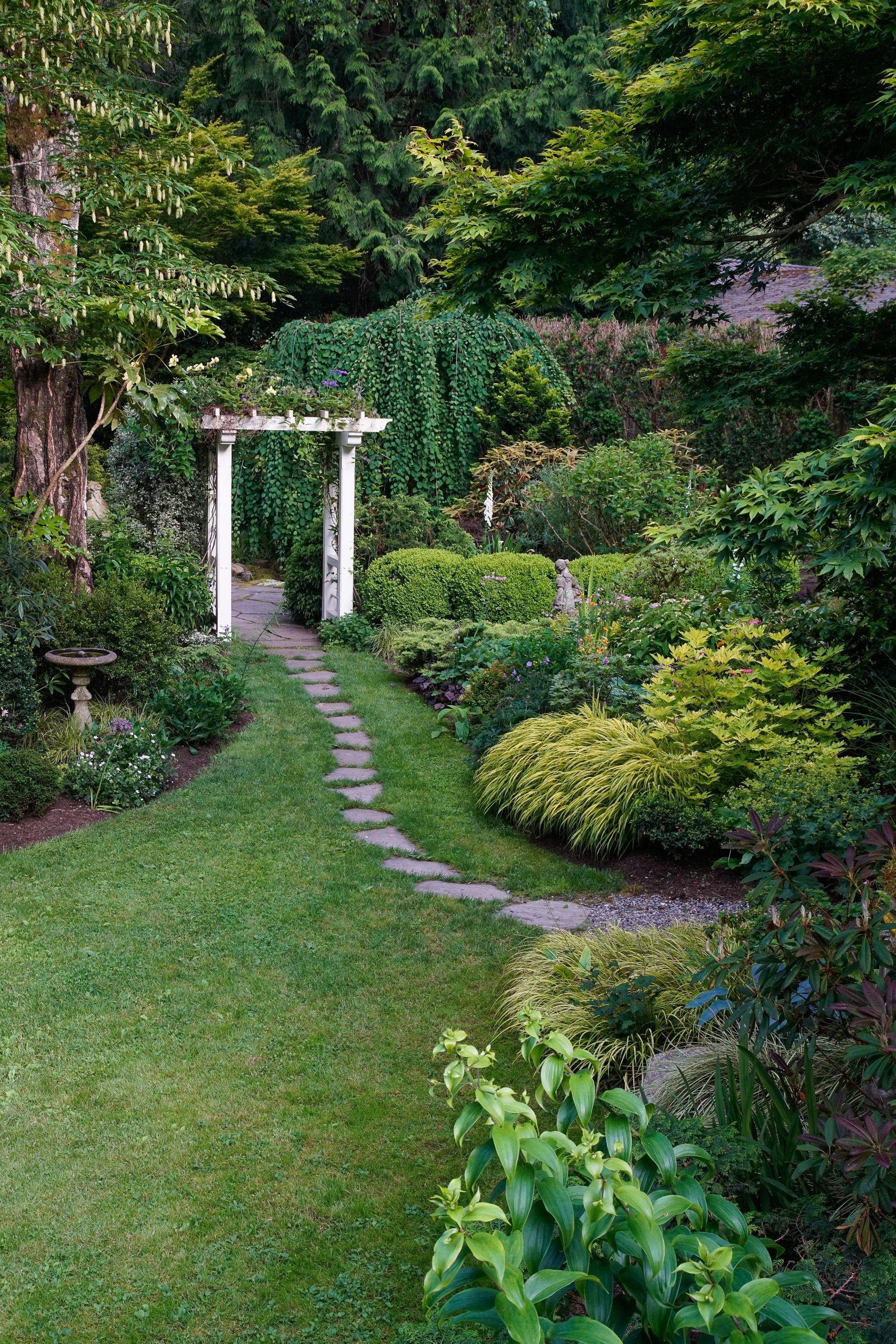 Creating a Beautiful Garden in the Shade