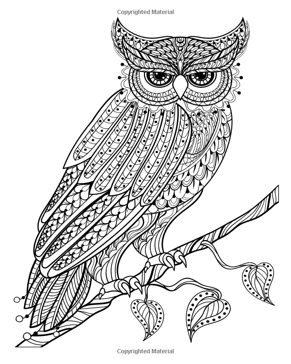stress relieving coloring pages owls - photo#15