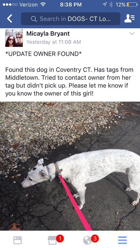 Sharon Magnuson Mlyniec Dogs Ct Reunited November 27 Reunited Coventry Dogs Pets Adoption