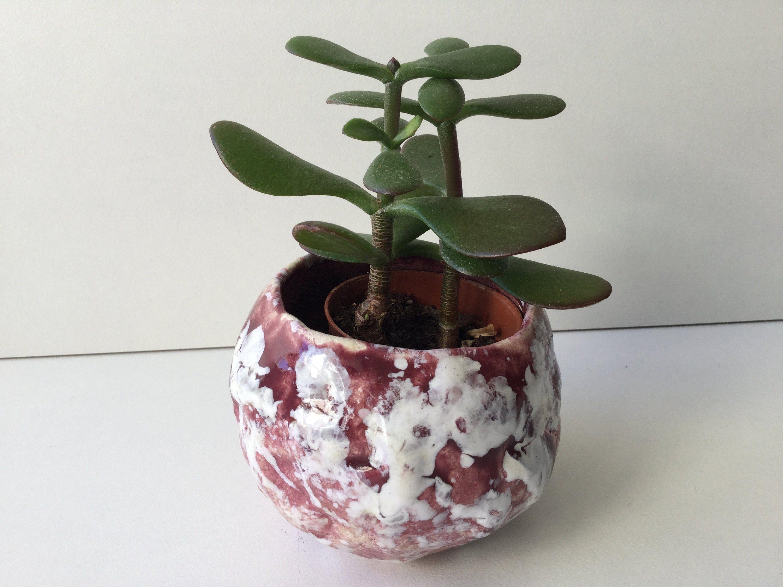 Ceramique Pot Pour Plantes Grasses Succulentes En Ceramique