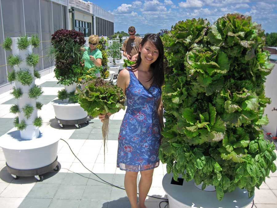 Charming Tower Garden...grow Your Own Produce On Your Patio Or In Your Window