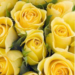 Absolutely Love Yellow Roses My Fav Flower Buque De Rosas