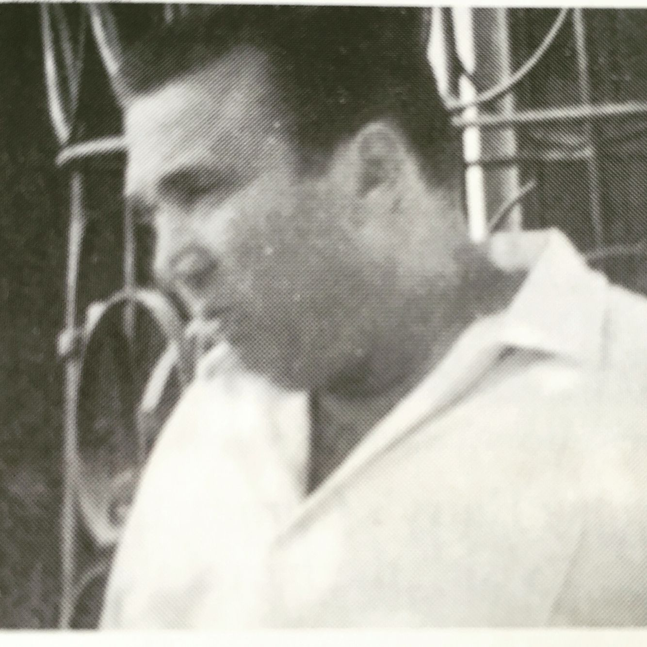 47 DeMeo ideas   crime family, roy demeo, mobster