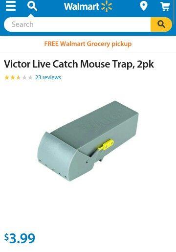 Mouse Live Trap 2 Walmart Grocery Pickup Live Mouse Trap Mouse Traps
