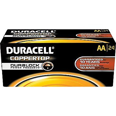 Georgine Saves » Blog Archive » Good Deal: Duracell AA or AAA Batteries 144-Pack $79.99 + Ship FREE! 2 Days ONLY!
