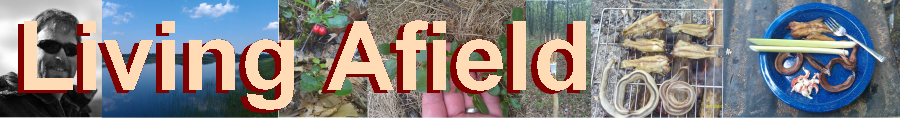 Living Afield - Great Lakes Michigan Edible Wild Plant Identification And Use website