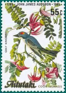 (1985) SG # 518 Sc # 368 Audubon, Gray Kingbird (Tyrannus dominencis)