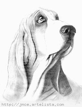 Dibujos Caras De Perros Border Coli Buscar Con Google Dibujos A