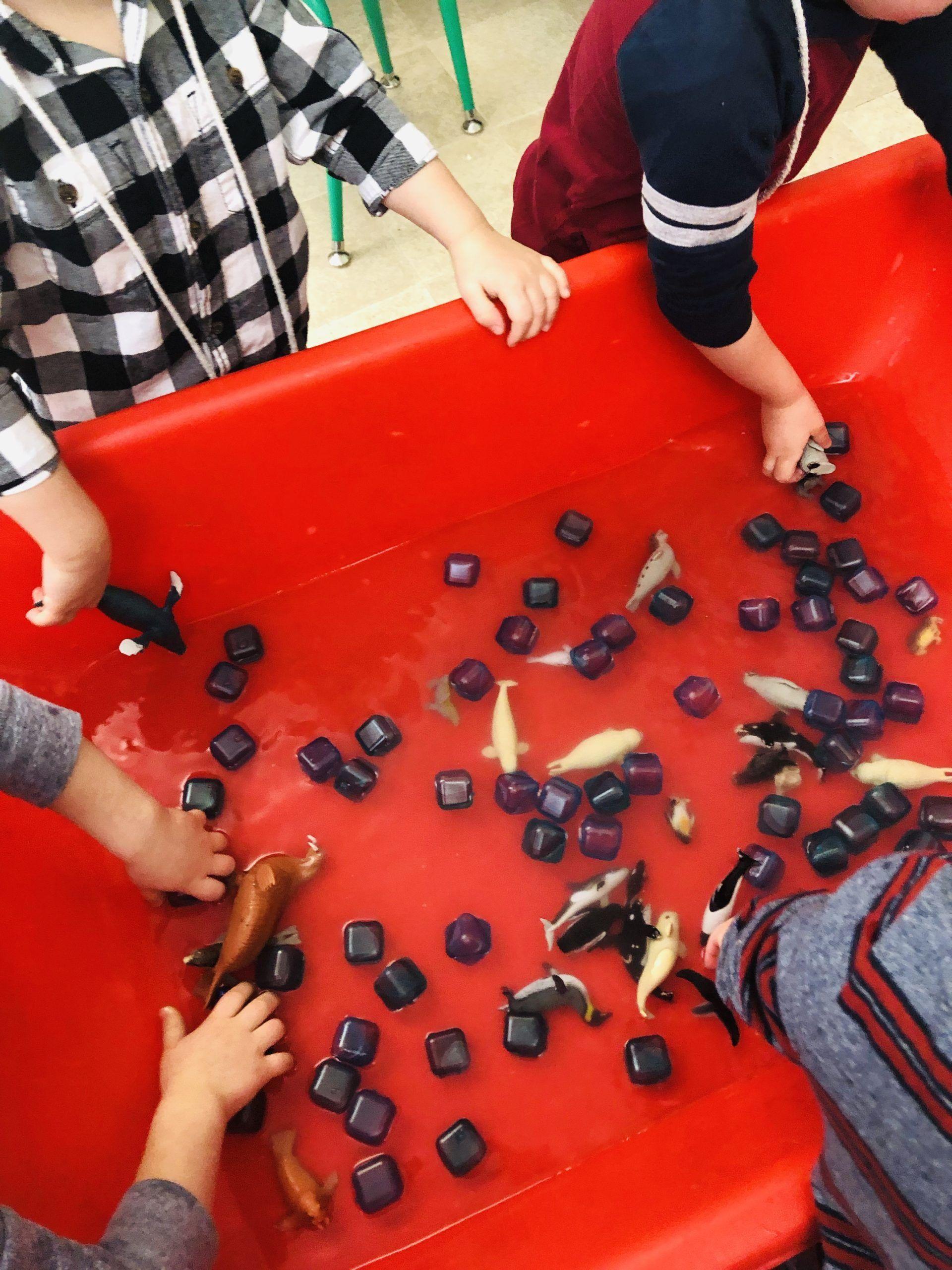 Arctic Animals Preschool Activities That Will Make Your