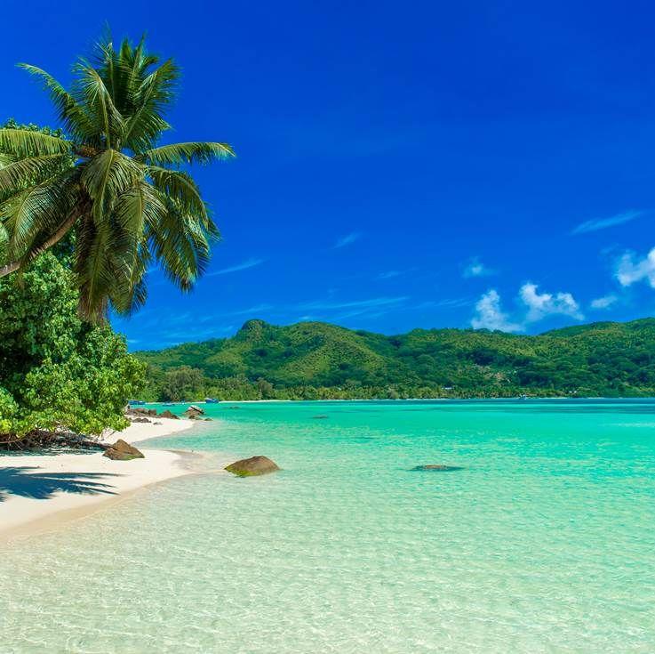 Seychelles Island Beaches: Paradise Island Bahamas, Beautiful Beaches