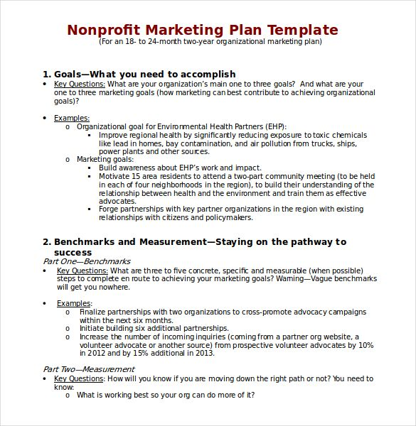 Non Profit Marketing Plan Template Download In Wordg 585600