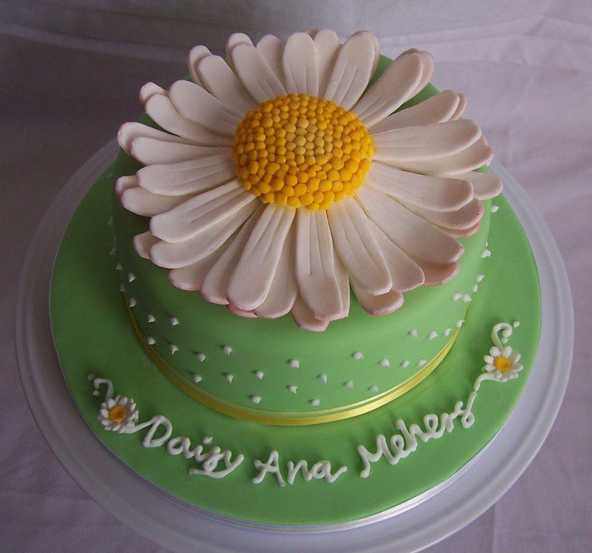 daisy cake Novelty Cakes - Wedding, Birthday and all celebration cakes by Elizabeth Miles based in Shaftesbury Dorset