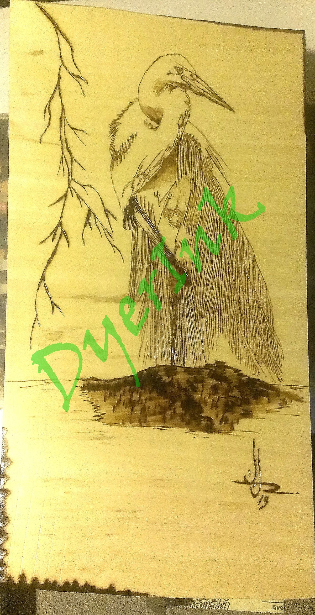 """This is """"Fancy Egret"""" - $60.00 - woodburned on basswood."""