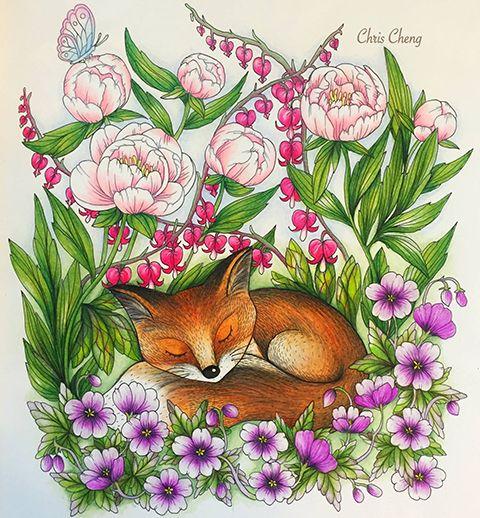 Blomster Mandala Coloring BookChris Cheng
