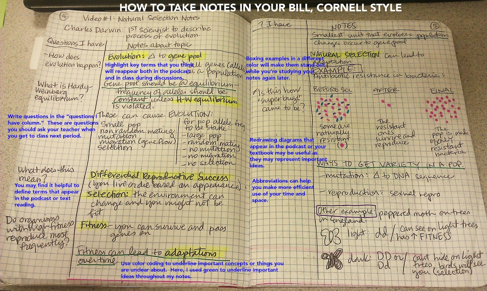 Interactive Notebooks Saints Ap Biology Biology Lessons Ap