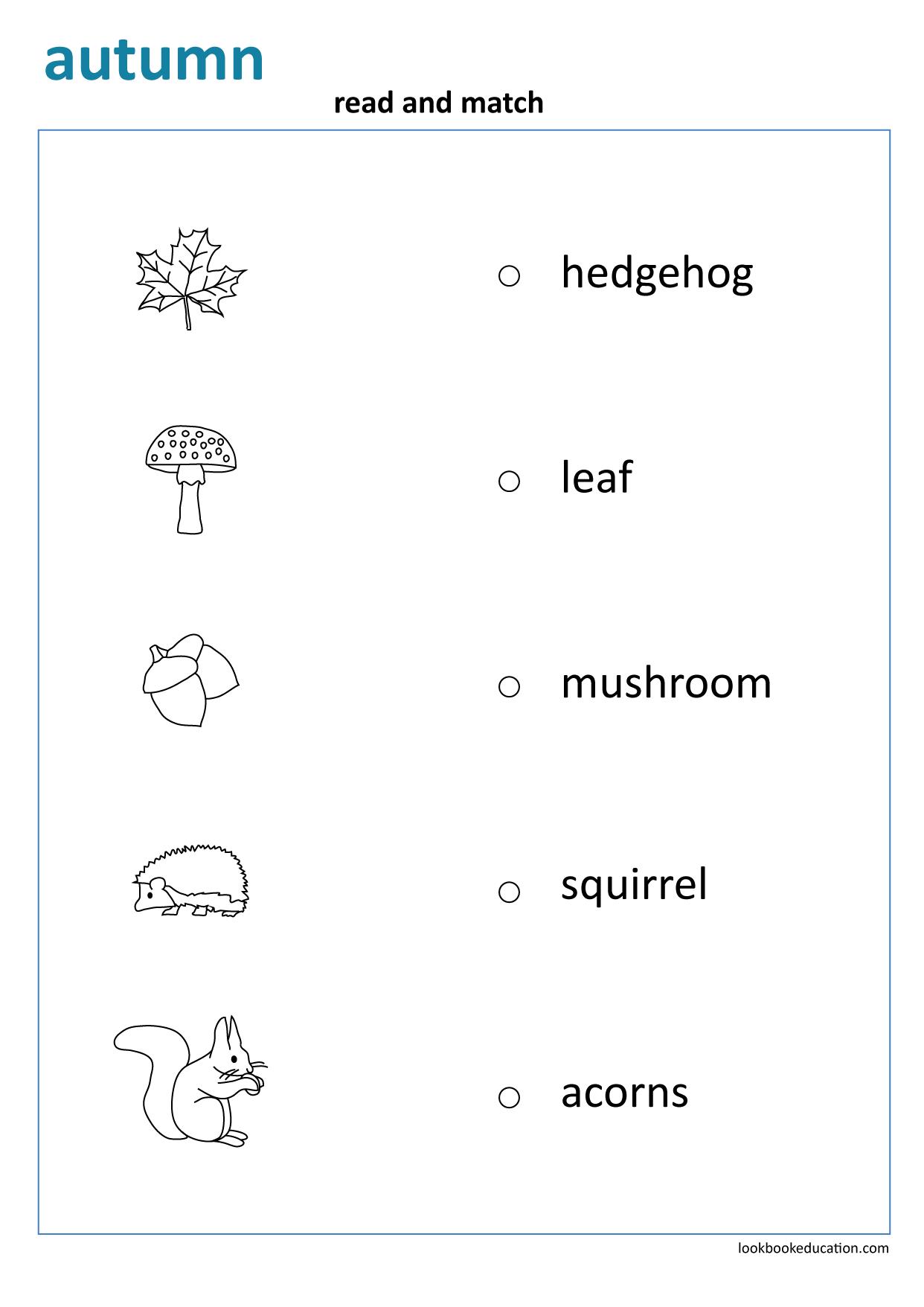 Worksheet Read And Match First Grade Worksheets Worksheets Math Worksheet [ 1756 x 1242 Pixel ]