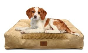 Akc Memory Foam Large Sofa Bed For Dogs Dog Sofa Bed Large Sofa Bed Sofa Bed Memory Foam