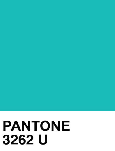 Pantone Solid Uncoated Colors Pinterest Pantone