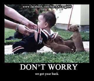 Don't worry, we got your back | Funny dog photos, Cute ...