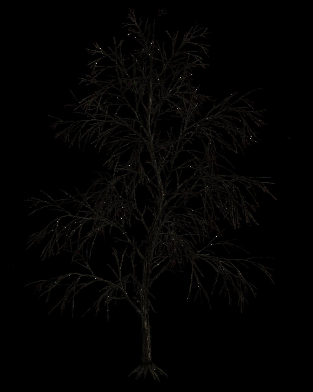 Dark Trees Png Stock 09 By Roy3d Dark Tree Tree Drawing Tree Watercolor Painting