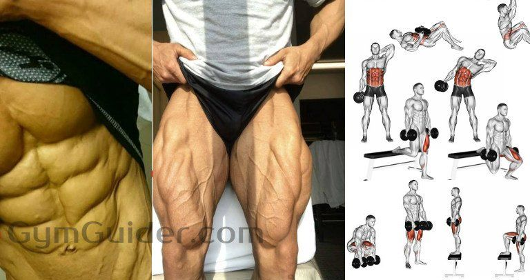 Gym Guider Workout Routines and Training Plan For Men & Women. Weight Loss - Muscle Building Gym Workout Plans #dumbbellworkout