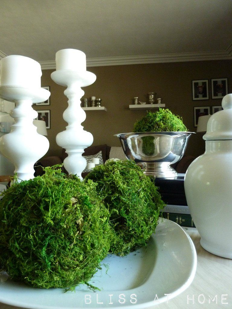 "Decorative Moss Balls Glamorous How To Make Decorative Moss Balls For That ""pop"" Of Color In A Room Design Decoration"