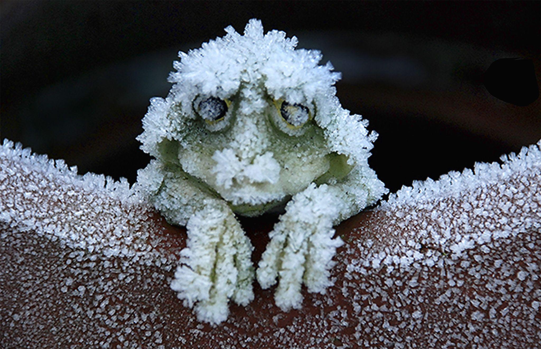 500px 上の Ann  の写真 I'm so cold