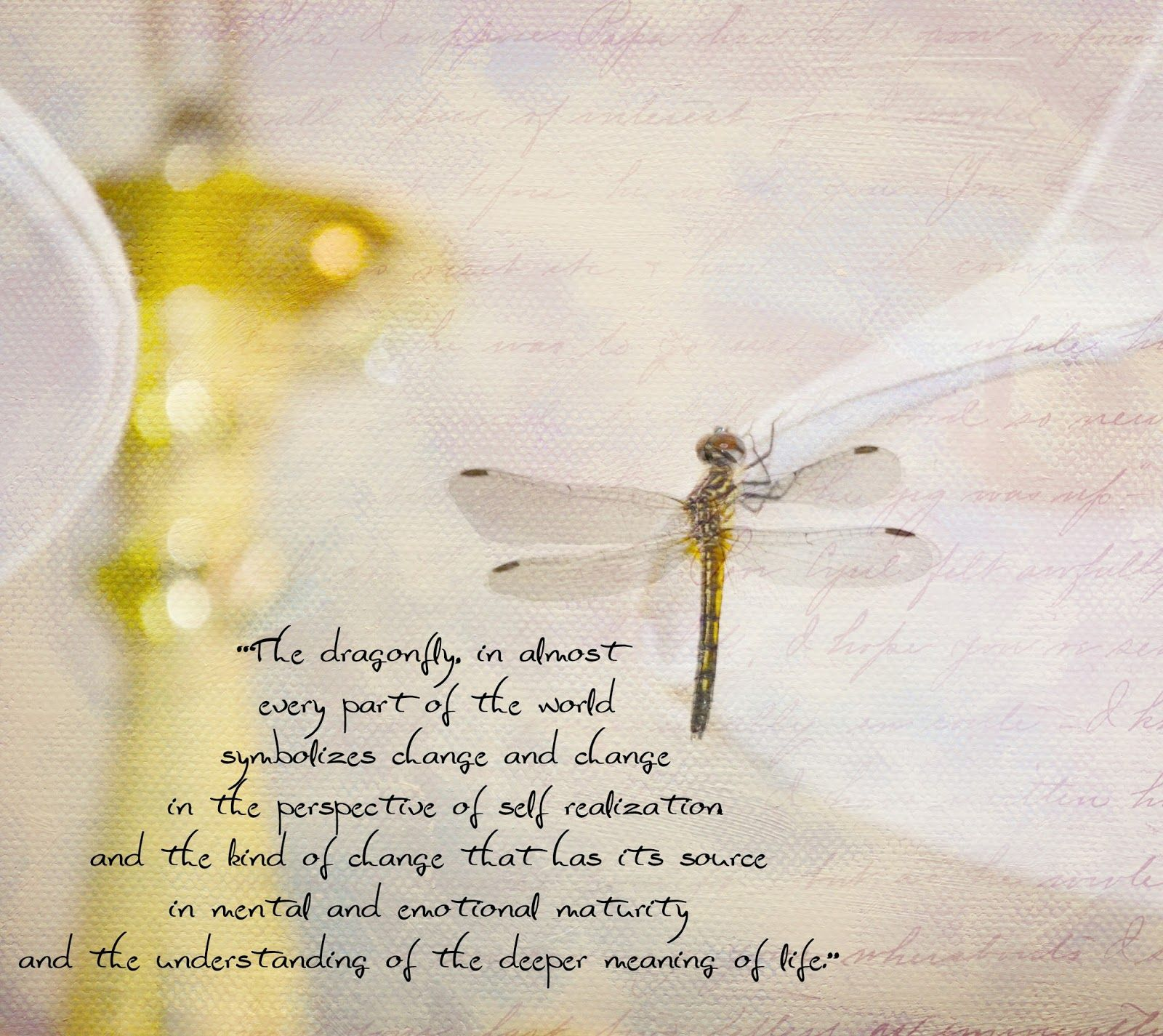 Dragonfly Quotes Am Linking To Pink Saturday Bev From How Sweet