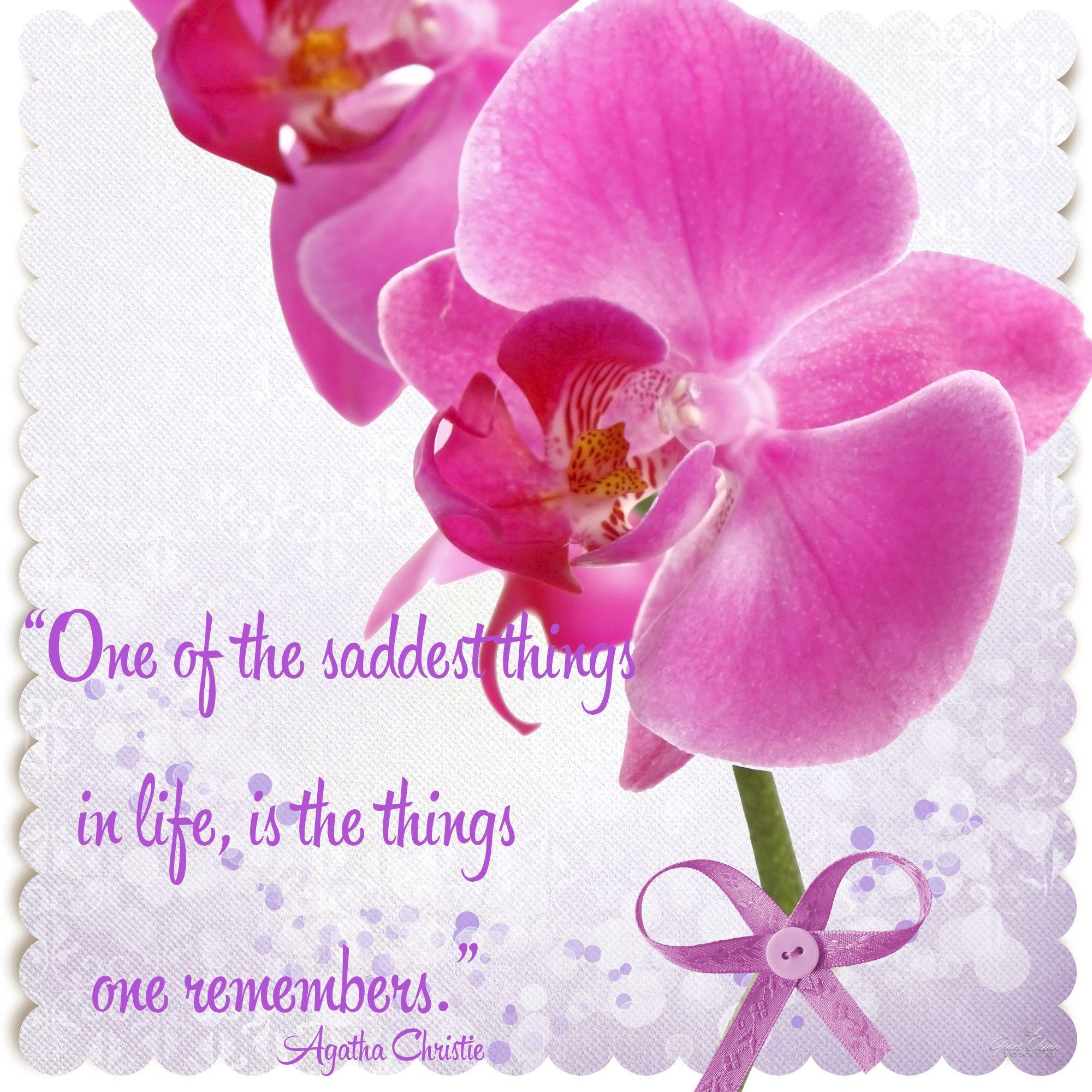 Orchids orquideas word art quote photography u design