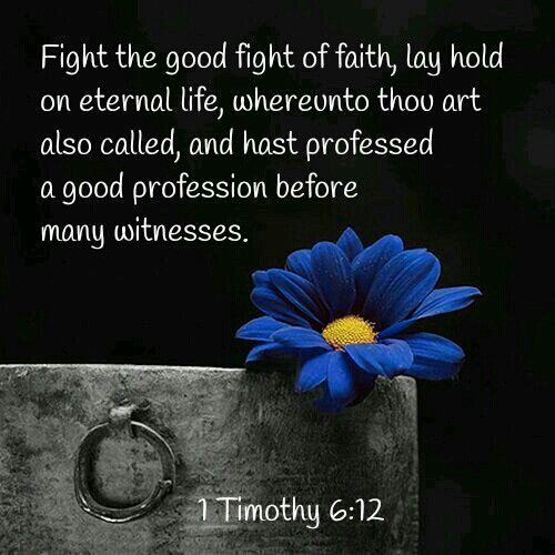 Image result for fight the good fight of faith kjv