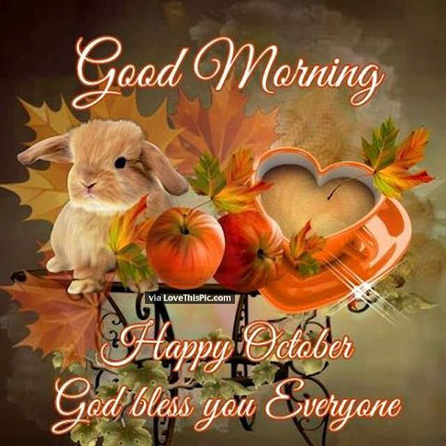Good Morning Happy October God Bless Everyone Good Morning October Hello  October Welcome October October Images Good Morning October Quotes Good  Morning ...