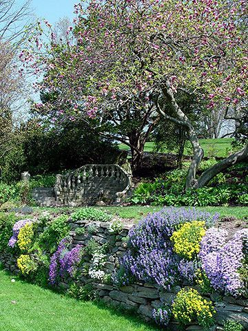 Ideas from the Morris Arboretum make the most of a space - soften retaining walls by adding perennials between stones for colormake the most of a space - soften retaining walls by adding perennials between stones for color
