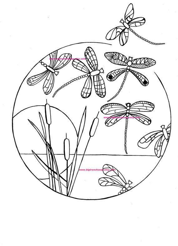 Adult Coloring Page For Grown Ups Dragonflies By Bigtranchsoap